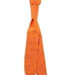 Bistrodas oranje